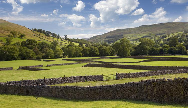 Yorkshire Dales Highlights Tour