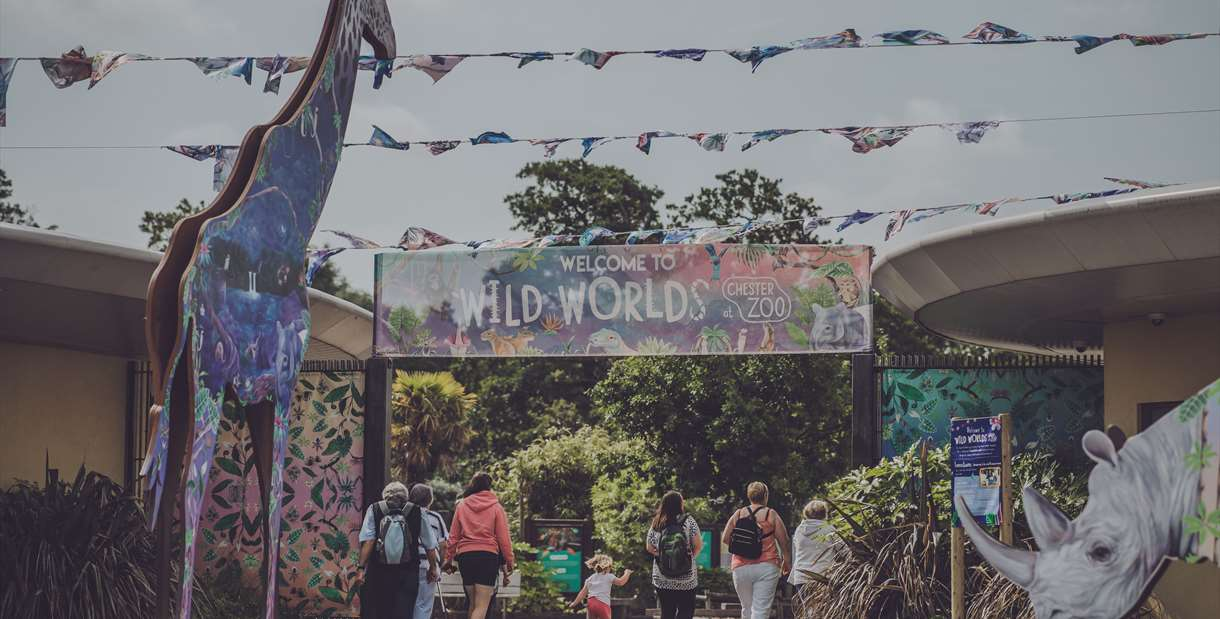 Wild Worlds at Chester Zoo