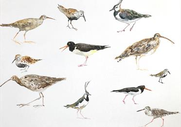 Painting with birds