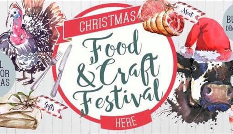 Albion Farm Christmas Festival 2019