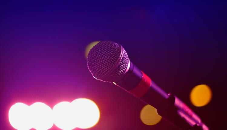 Microphone at concert or gig