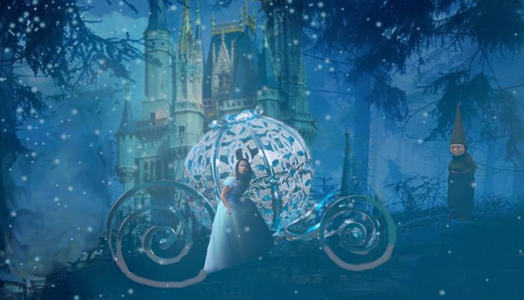 Cinderella at night