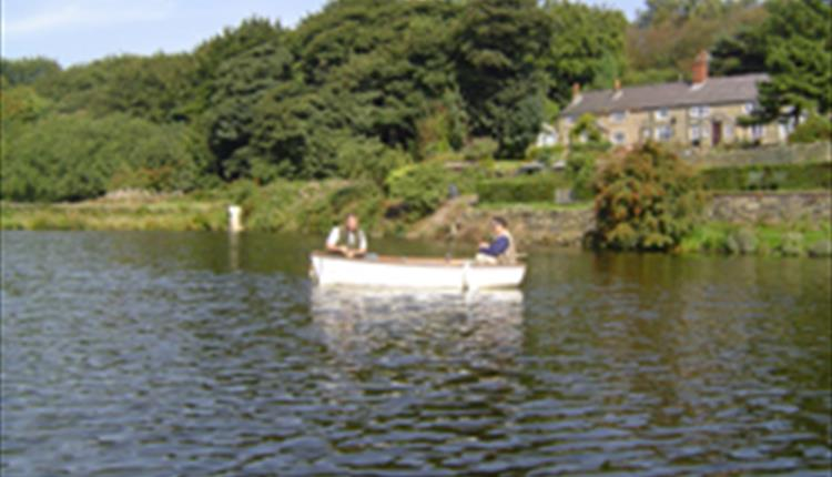 Curley's Trout Fishery