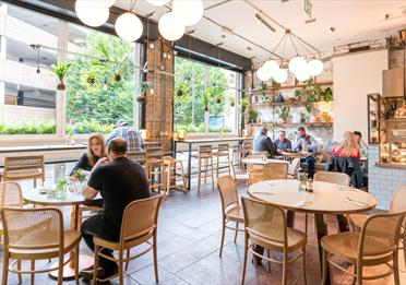 Evelyn's Café and Bar