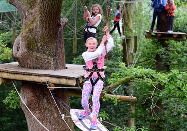 Treetop Windermere