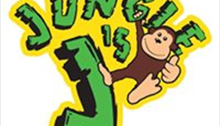Jungle J's Indoor Soft Play and Party Centre