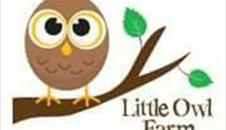 Little Owl Farm