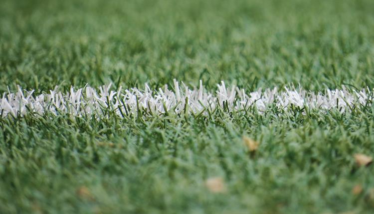 Football pitch up close