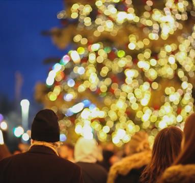 People enjoying Christmas lights