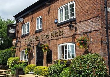 The Swan with Two Nicks