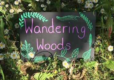 Wandering woods image