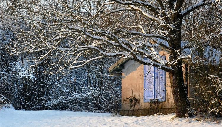 Winter scene: house with snow