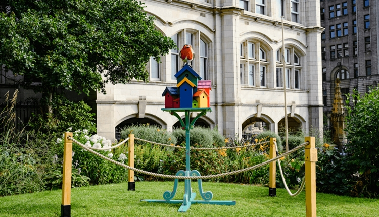 A colourful bird house sits amongst greenery in St Peters Church Courtyard