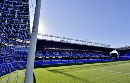 A shot of the stadiums blue seats and and grass taken from the goal.