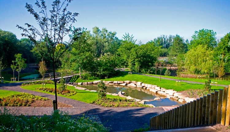 Landscaped gardens with green grass, trees and a pond.