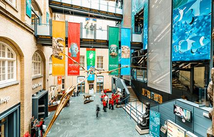 Entrance to the World Museum from above featuring yellow, red, green and blue hanging banners and a giant skeleton of a flying type dinosaur.