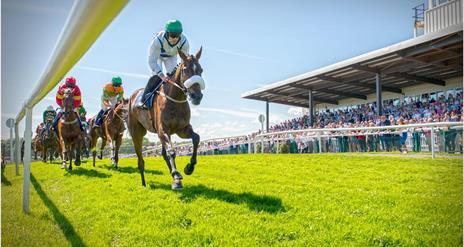 Downpatrick Racecourse