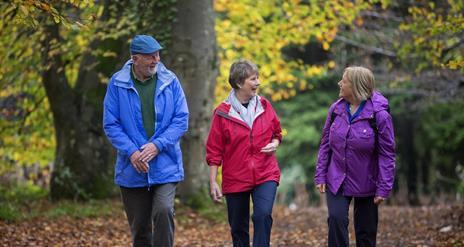 Castlewellan Forest Park - Moorish Tower Walk