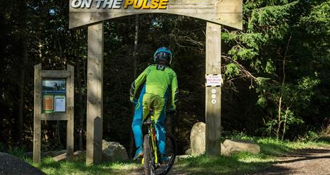 Rostrevor On the Pulse
