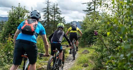 Electric Mountain Biking on the Castlewellan Red Trail – Bike Mourne