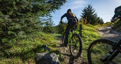 Rostrevor Black Trail