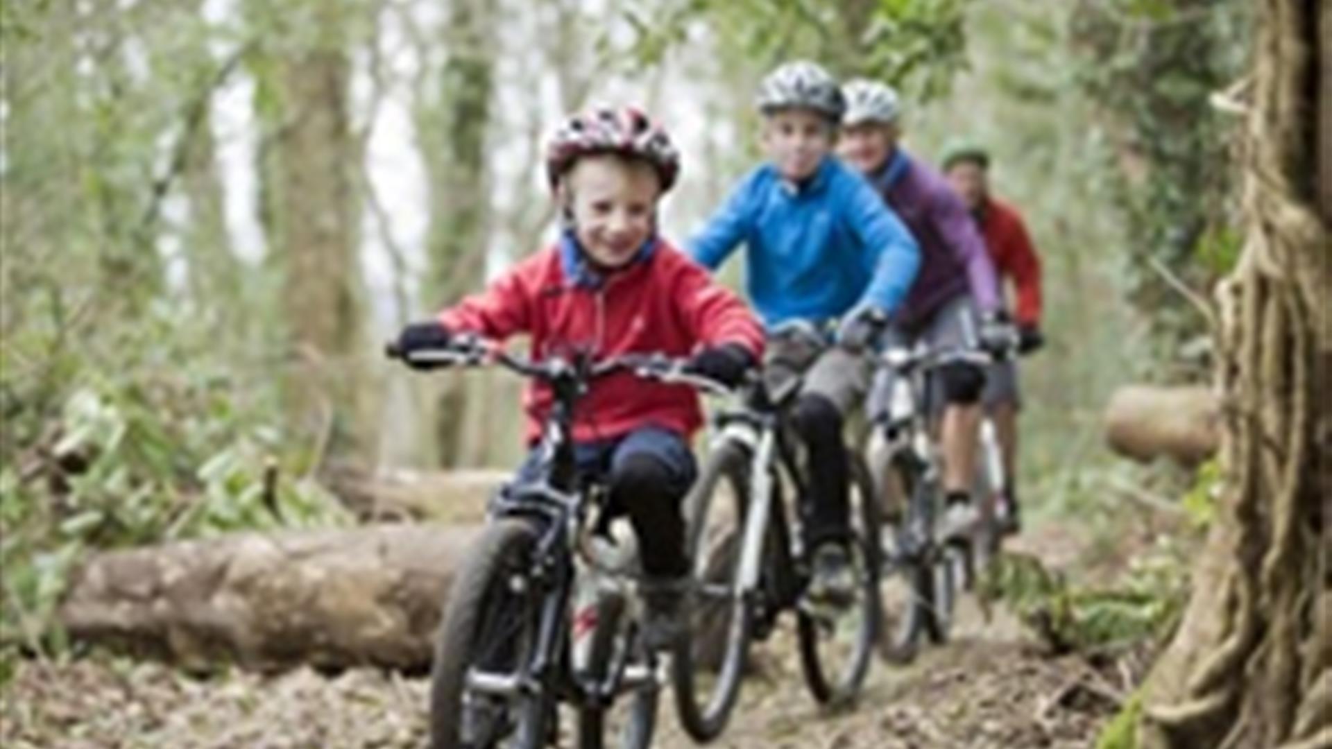Castlewellan Mountain Bike Trails