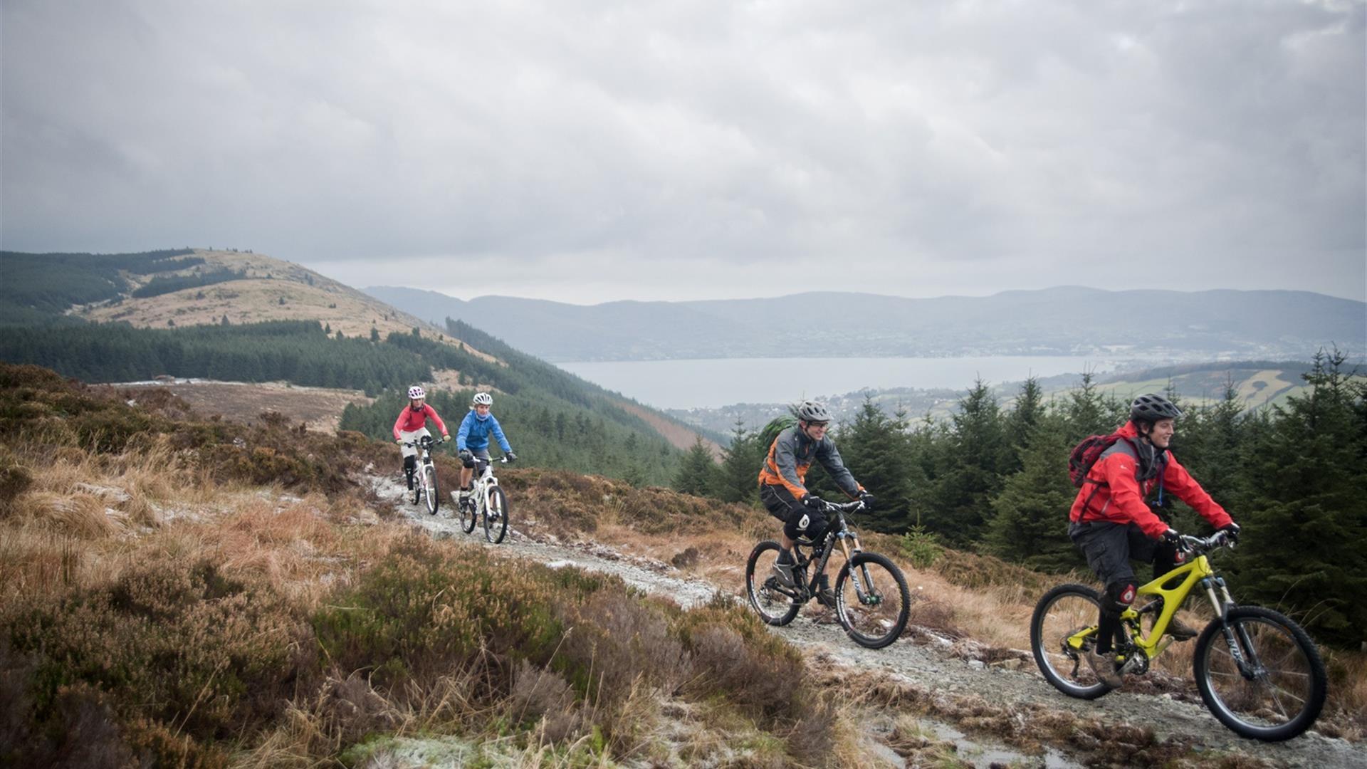 Rostrevor Mountain Bike Trails