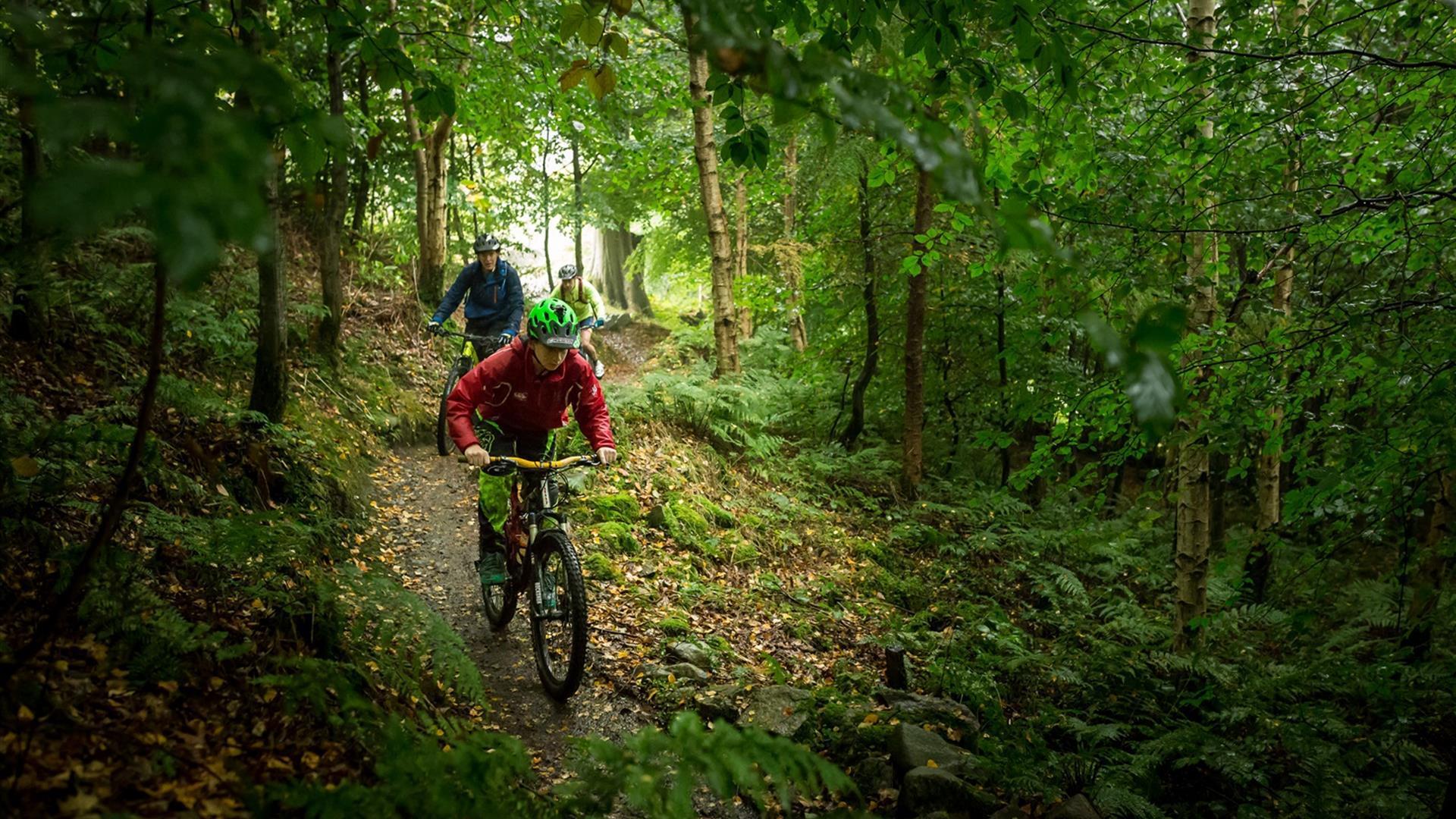 Castlewellan Blue Trail