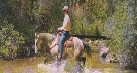 Western Style Horse Riding