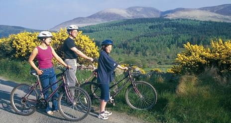 Rostrevor Cycle Route