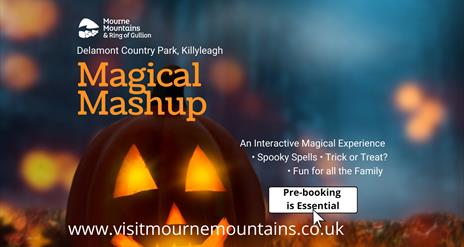 Booking link for Magical Mashup event in Delamont Country Park