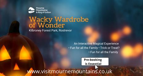 Wacky Wardrobe of Wonder at Kilbroney Park