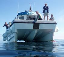 Thumbnail for Newquay Sea Safaris