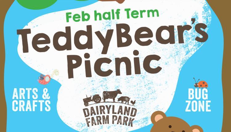 Teddy Bears Picnic at Dairyland Farm Park