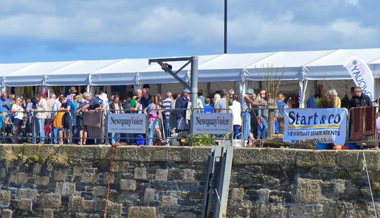 Newquay Fish Festival - Saturday Programme - 2019