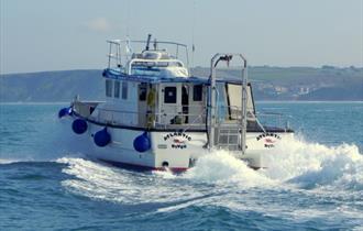 Newquay Sea Safaris and Fishing
