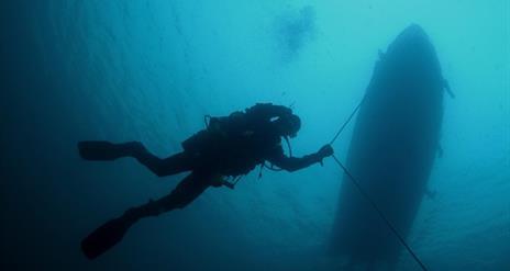 D V Diving