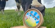 Image shows cartons of ice-cream with a cow in a field nudging one of the cartons