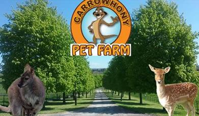 Carrowhony Pet Farm
