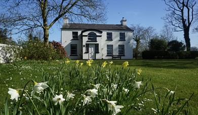 Image shows front of property with large lawn and daffodils in the foreground