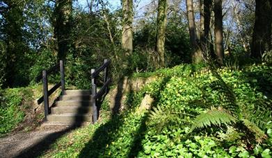 Loughbrickland Park