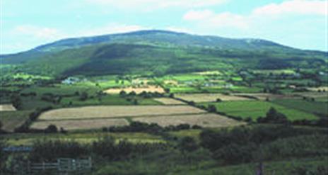 Corliss Fort