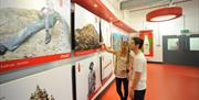 Image shows a man and a woman viewing exhibition images