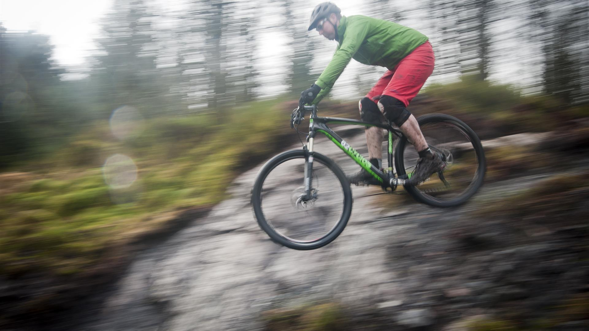 Davagh Forest Trails