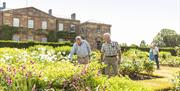 image is of visitors enjoying the gardens and inspecting the flowers and plants with the castle in the background