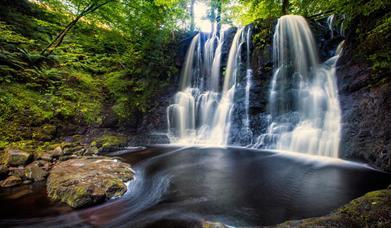 Glenariff Forest Park