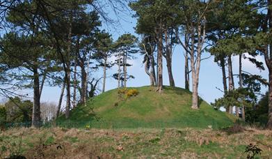 Shandon Park Mound