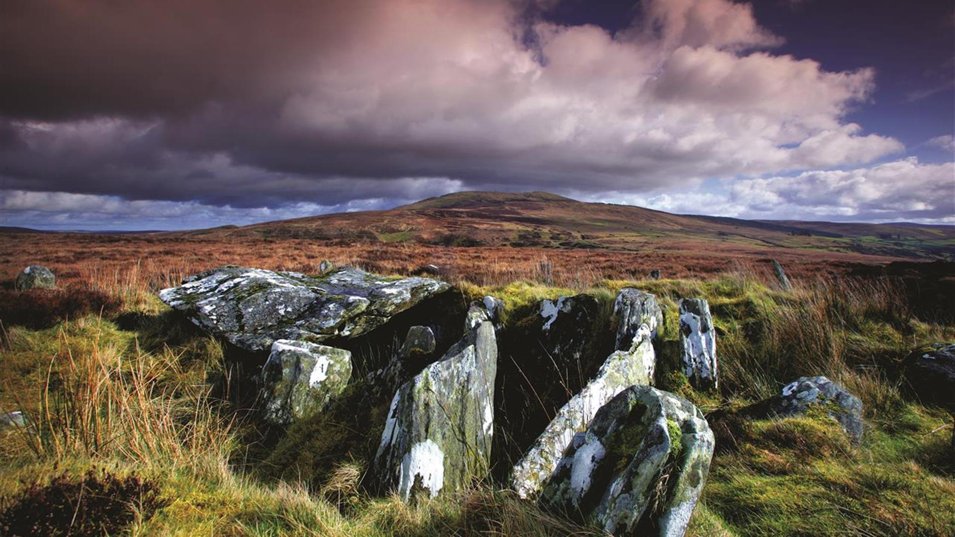 Clogherny Wedge Tomb