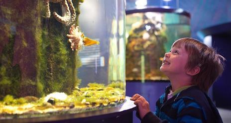 Riverwatch Visitor Centre & Aquarium