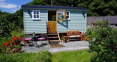 Little Orchard Shepherds Hut @ Nutgrove House B&B